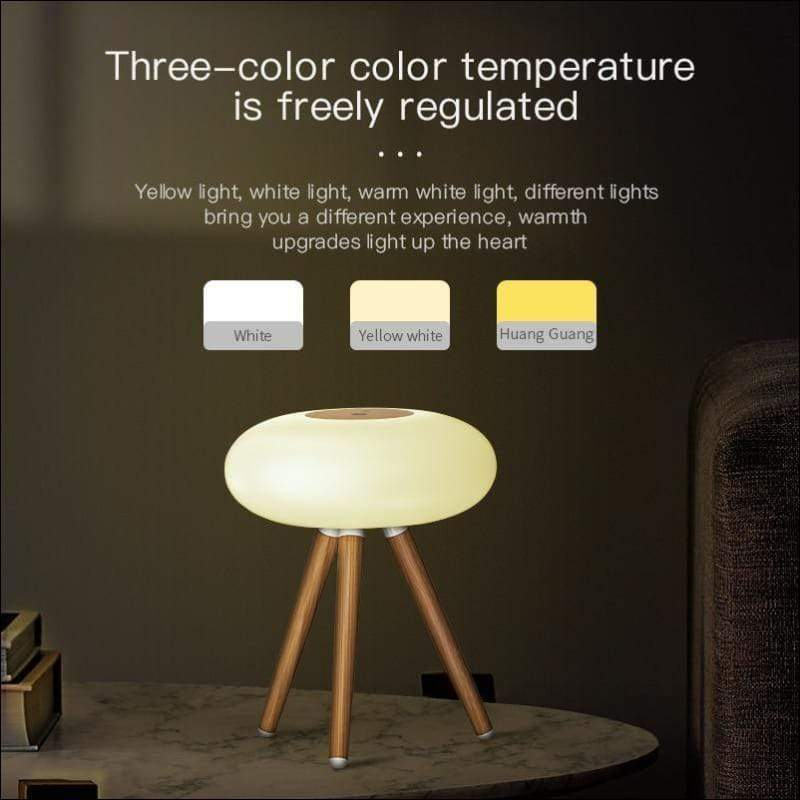 Inductive Infrared Night Light Lamp