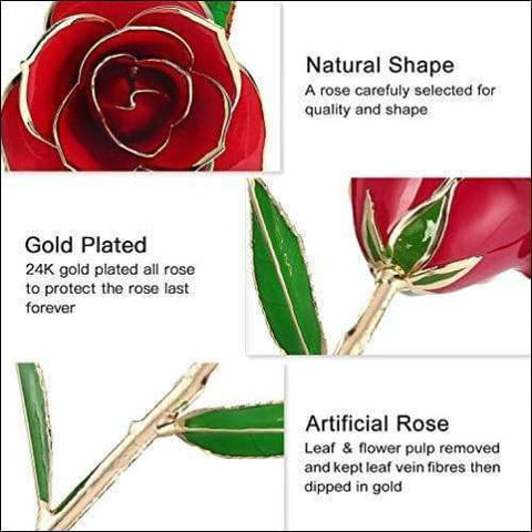 Long Stem 24K Gold Luxury Rose Box - novariancreations.com
