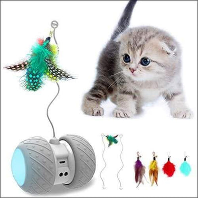 Robotic Feather Ball Teaser Cat Toy - Pet Product
