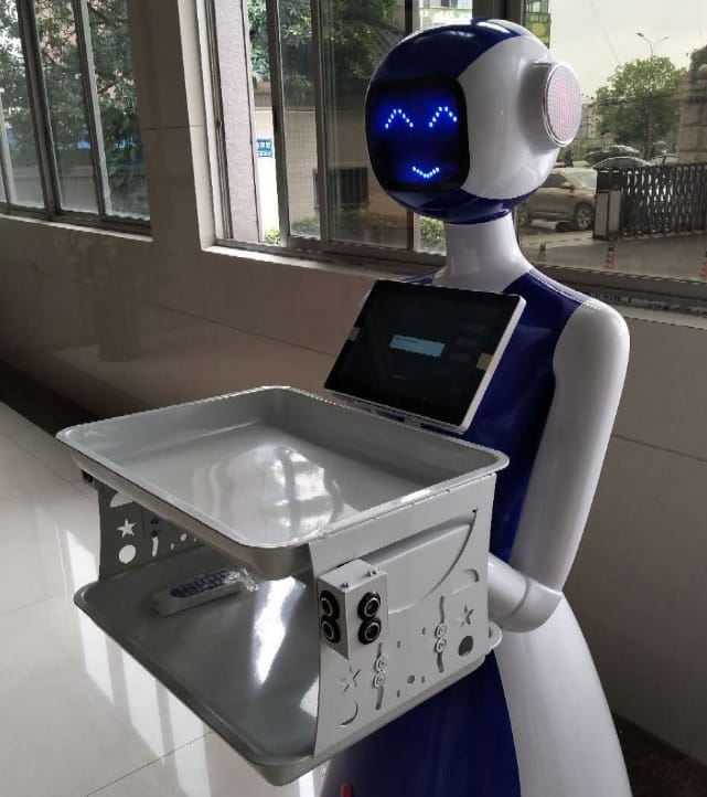 Humanoid Smart Home Robot - Home Electronics