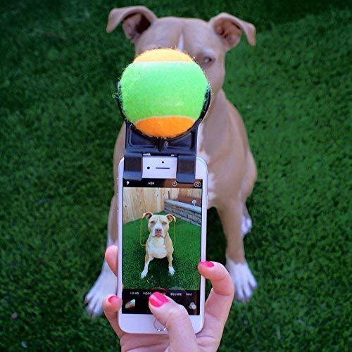 Travel Outdoor Pets Phone Clip Selfie Artifact with Interactive Toys Model show 01