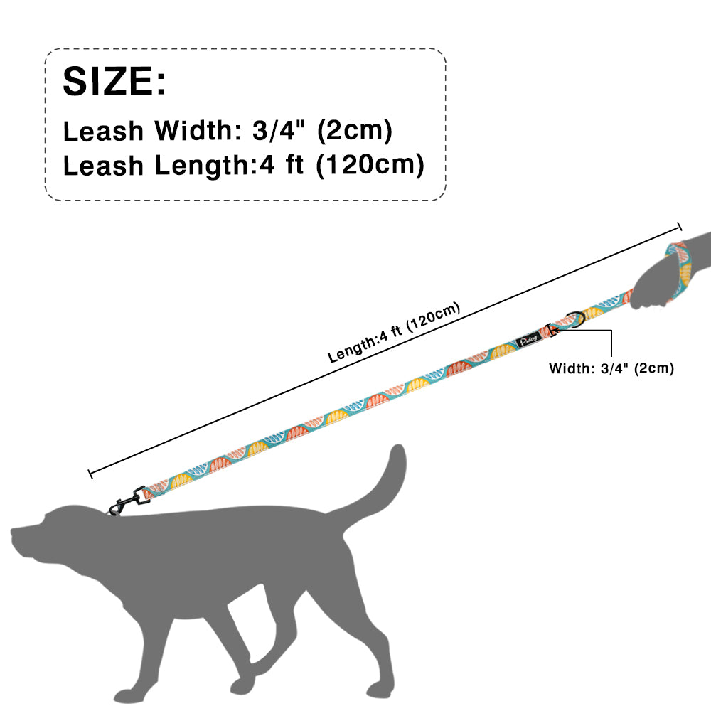 Agatha Travel Accessories For pets Dogs Basic Leashes Size