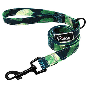 Agatha Travel Accessories For pets Dogs Basic Leashes Green