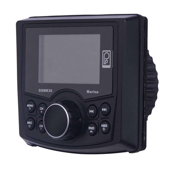 Poly-Planar GSMR30 MP4/MP3/Photo-Playback Gauge Style Marine Radio [GSMR30]
