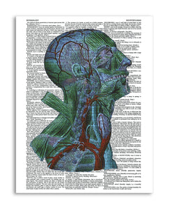 "Psychedelic Anatomy 2 8.5""x11"" Semi Translucent Dictionary Art Print"