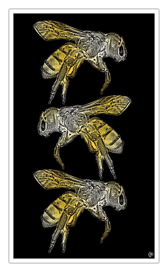 "Three Bees 13""x22"" Vintage Style Showprint Poster - Home Nostalgia Decor Wall Art Print - Kristy Joyce Artist Edition"