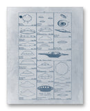 "UFO Sightings Chart - 11"" x 14"" Mono Tone Print (Choose Your Color)"