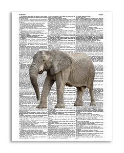 "Elephant 8.5""x11"" Semi Translucent Dictionary Art Print"