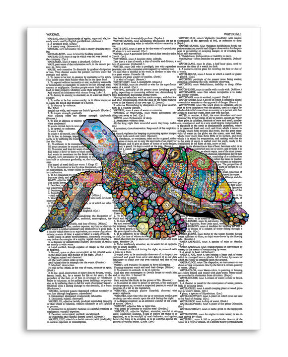 Jewelled Sea Turtle 8.5
