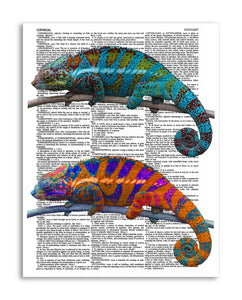 "Chameleons 8.5""x11"" Semi Translucent Dictionary Art Print"