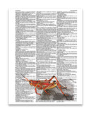 "Red Grasshopper 8.5""x11"" Semi Translucent Dictionary Art Print"