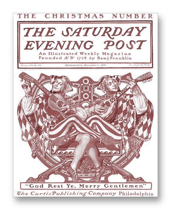 Saturday Evening Post Vol174 No23 11