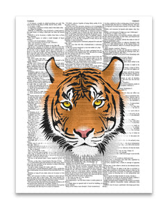 "Tiger Illustration 8.5""x11"" Semi Translucent Dictionary Art Print"