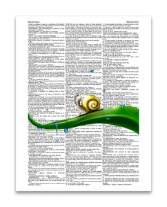 "Melancholy Snail 8.5""x11"" Semi Translucent Dictionary Art Print"