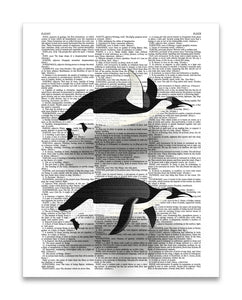 "Flying Penguins 8.5""x11"" Semi Translucent Dictionary Art Print"