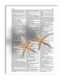 "Starfish Pair 8.5""x11"" Semi Translucent Dictionary Art Print"