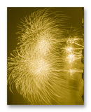 "Splendid Fireworks 11"" x 14"" Mono Tone Print (Choose Your Color)"