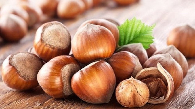 Turkey exports 140k tons of hazelnut in 5 months - Import from Turkey