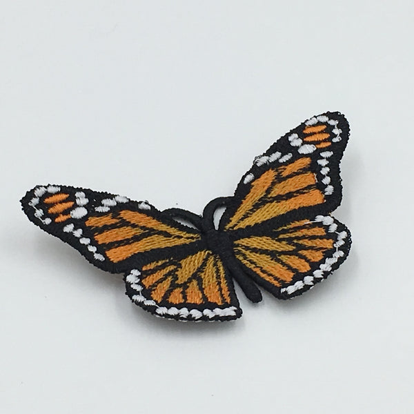 Lace Monarch Butterfly