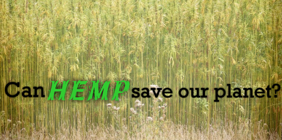 CAN HEMP SAVE THE ENVIRONMENT?
