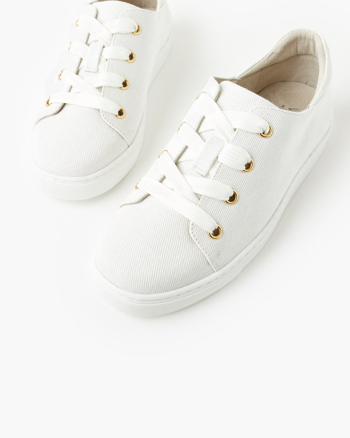 Harriet Canvas Sneaker- White