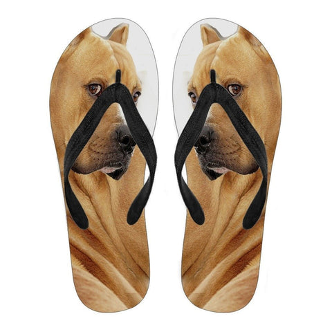 Pitbull Flip Flops For Men-Free Shipping Limited Edition