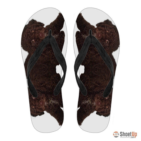 Spanish Water Dog Print Flip Flops For Women-Free Shipping