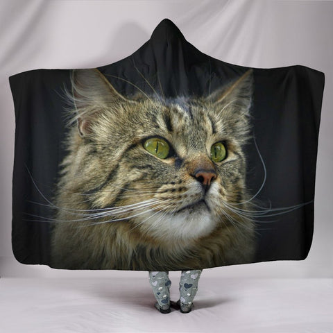 Amazing Norwegian Forest Print Hooded Blanket-Free Shipping
