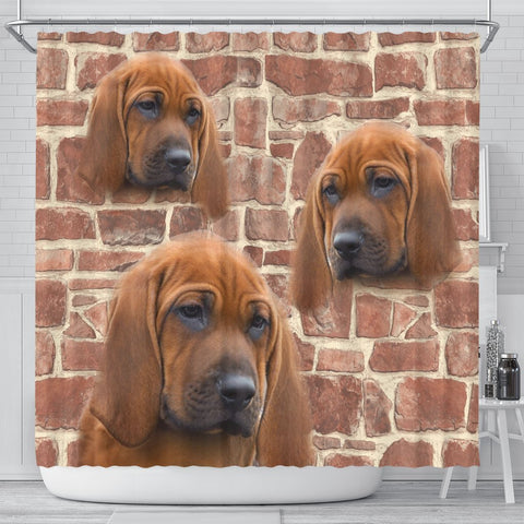 Redbone Coonhound Print Shower Curtains-Free Shipping