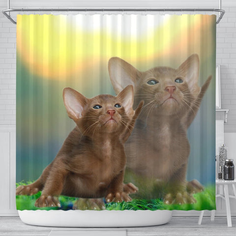 Cute Oriental Shorthair Cat  Print Shower Curtains-Free Shipping