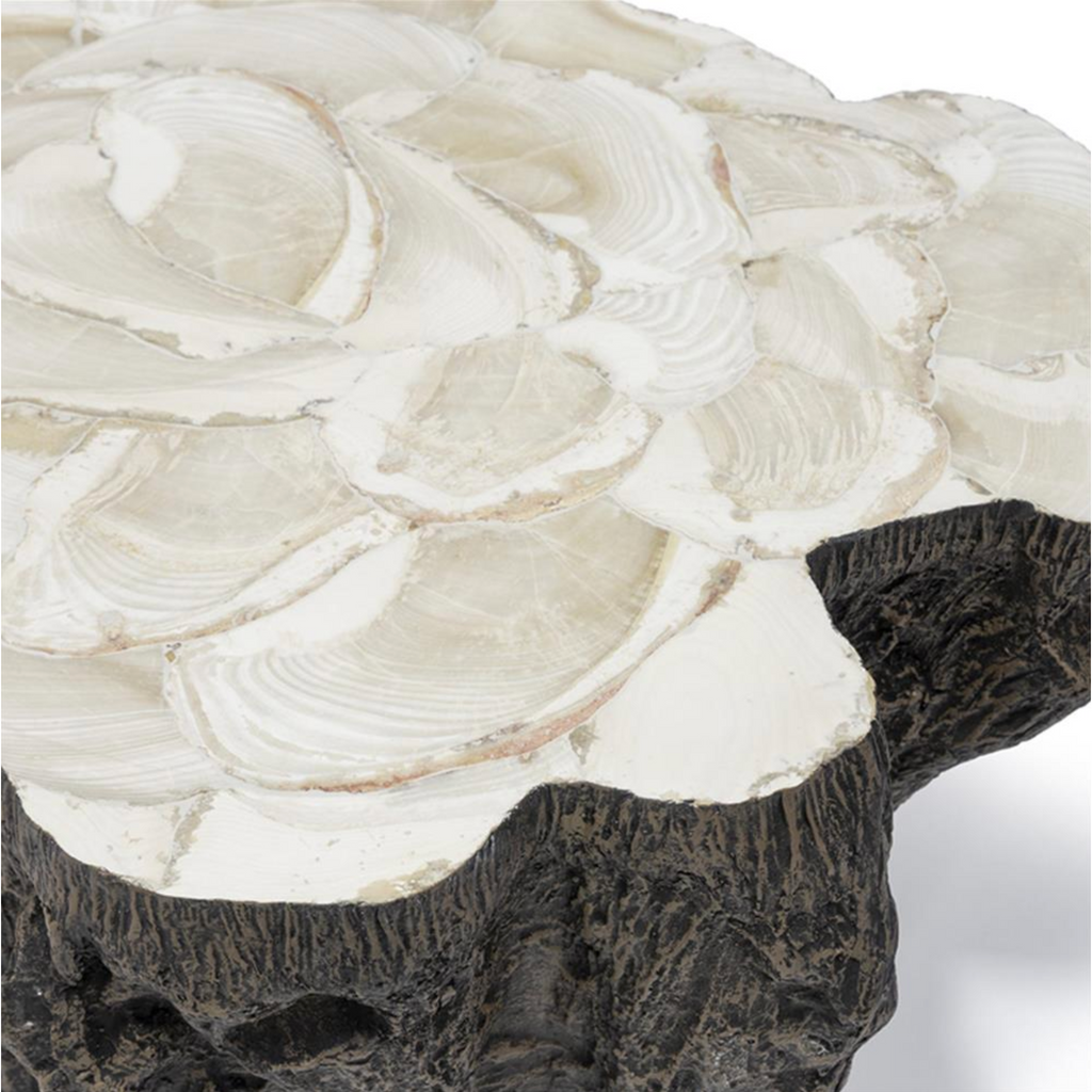 Chloe Fossilized Clam Lava Coffee Table