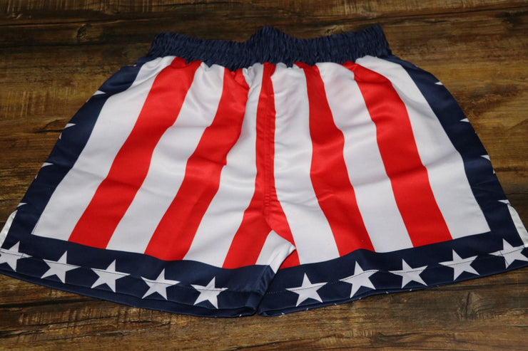 USA Boxing Shorts