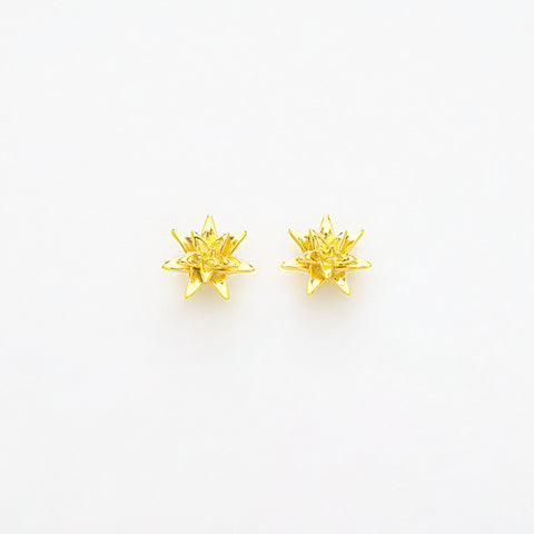 carolina disc gold earrings