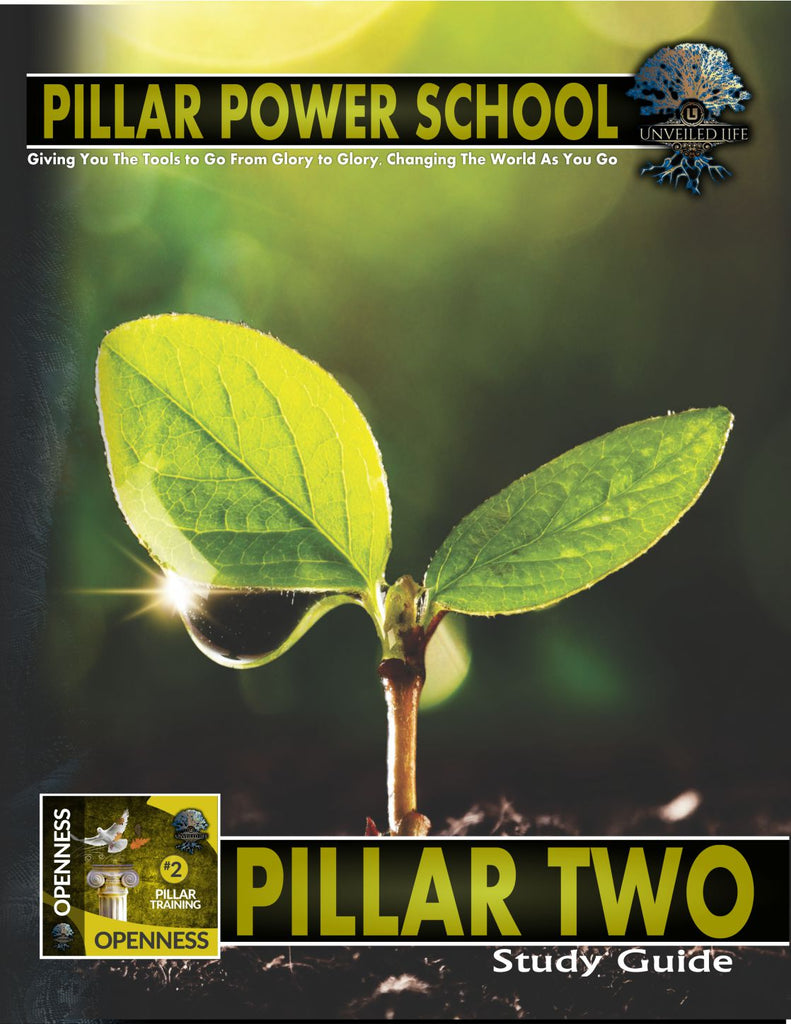 Unveiled Life Pillar 2 Study Guide