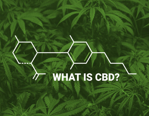 CBD - What is CBD