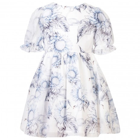 Girls Blue & White Chiffon Dress
