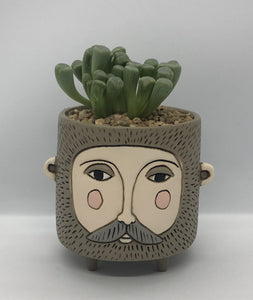 'Hairy Jack' with Succulents