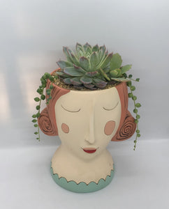 'Red Rose' with Succulents