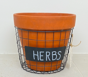 Pot in Wire Basket