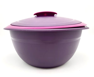 Tupperware insulated bowl