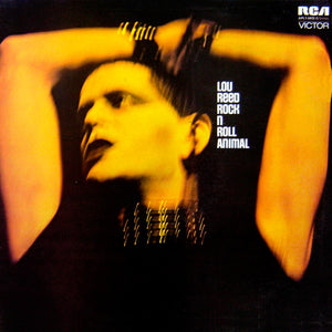 Lou Reed - Rock N Roll