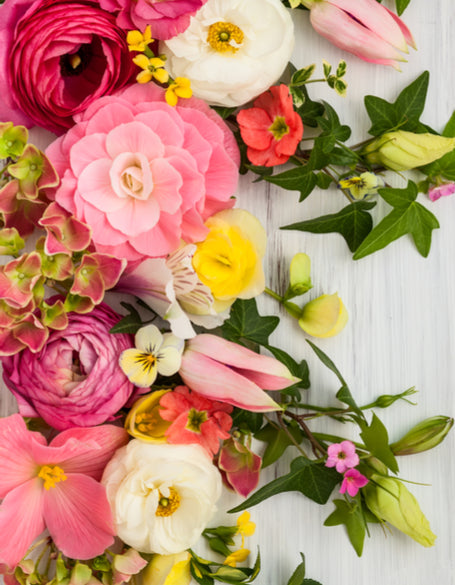 Same day flower delivery Toronto – Toronto flowers gifts - Traditional Flower Gifts