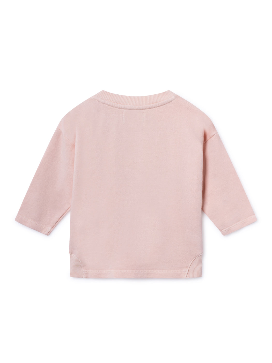 Ant And Apple Round Neck Sweatshirt