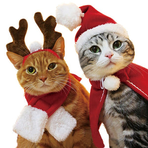 Pet Cat clothes costume halloween cat hat scarf suit cloak dress up New Year pet costume cloak Christmas clothes mascotas - Products & Products Store