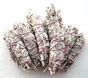 Small White Sage Wands Bulk - 1 dozen