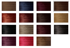 BIGEN SEMI-PERM COLOR WHEEL