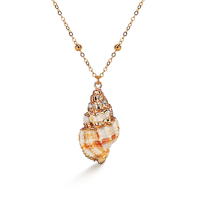 Conch Shell Necklace with gold detail
