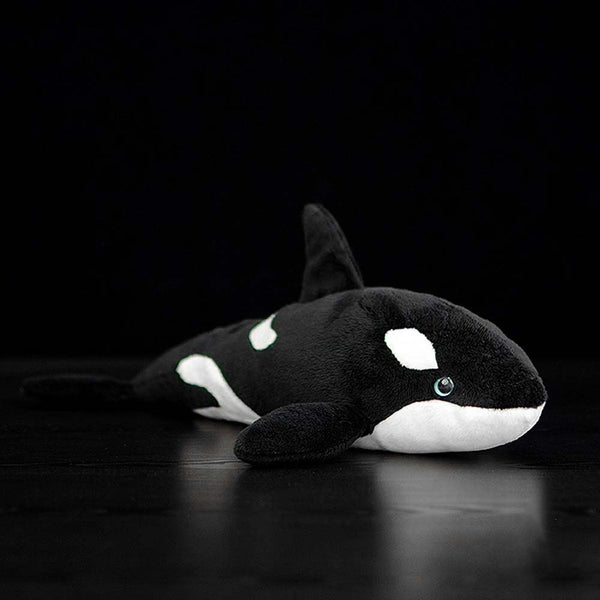 Killer Whale Cuddly Toy