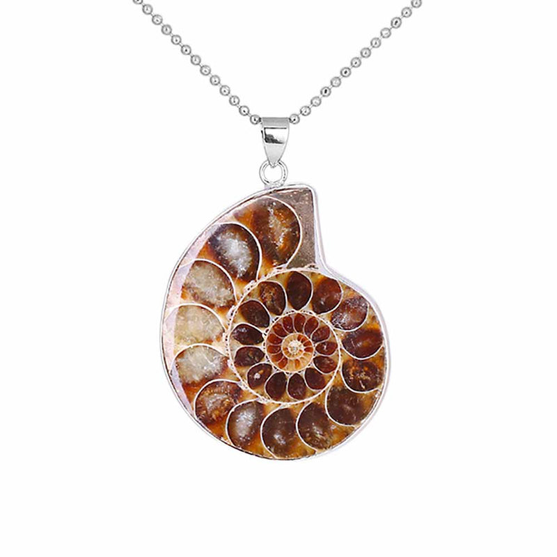 Ammonite Sea Snail Shell Necklace