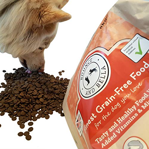 Bounce and Bella Complete Grain Free Dry Dog Food (Salmon - 8KG)